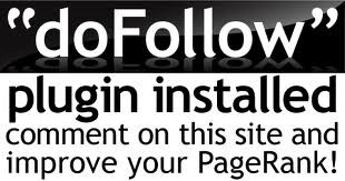 dofollow e1298706854792 3 Key MLM Home Business Steps To Boost PageRank, Traffic & Visitors